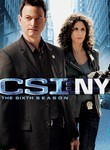 CSI: NY: Season 6 (2009) [TV]