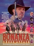 Bonanza: Under Attack
