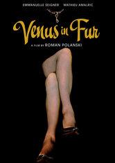 Rent Venus in Fur on DVD