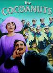 Cocoanuts (1929)
