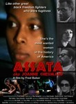 Assata aka Joanne Chesimard